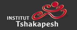 Institut Tshakapesh